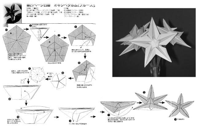 Origami star flower video tutorial paper kawaii origami star flower diagram enjoy xxx mightylinksfo Images