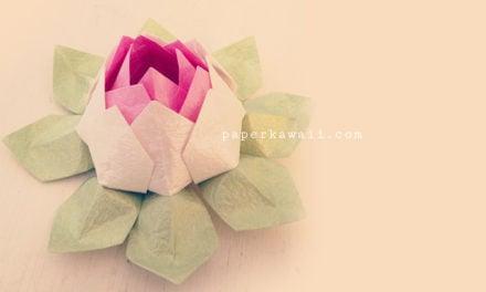 Modular Origami Lotus Flower – Video Tutorial