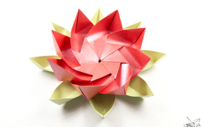 Modular Origami Lotus Flower with 8 Petals – Tutorial