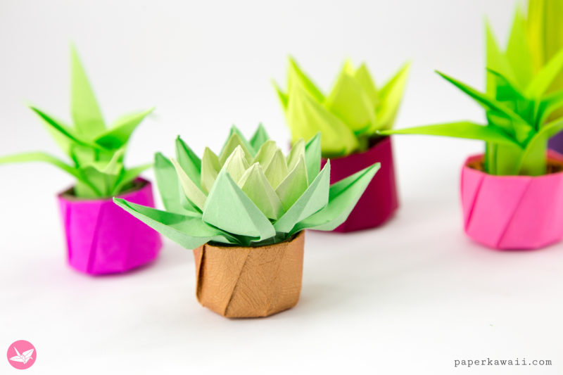 Mini Origami Succulent Plants Tutorial via @paper_kawaii