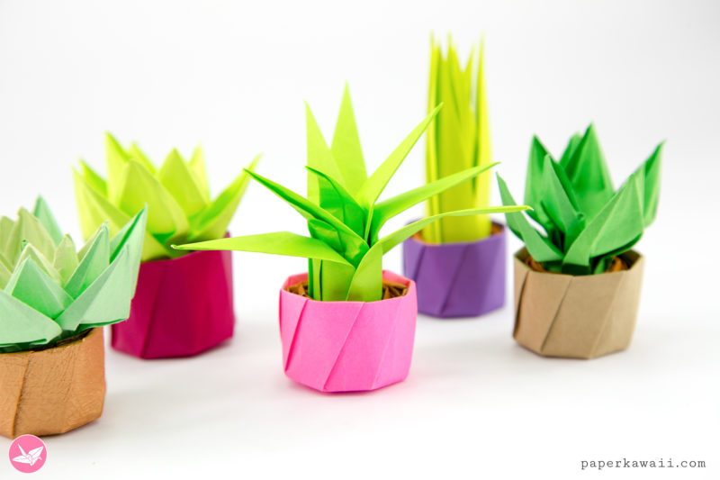 Mini Origami Succulent Plants Tutorial via @paper_kawaii